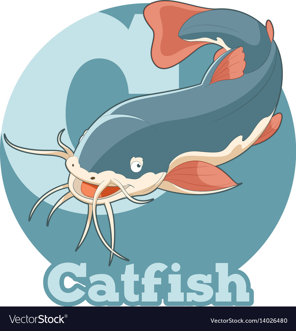 Abc cartoon catfish