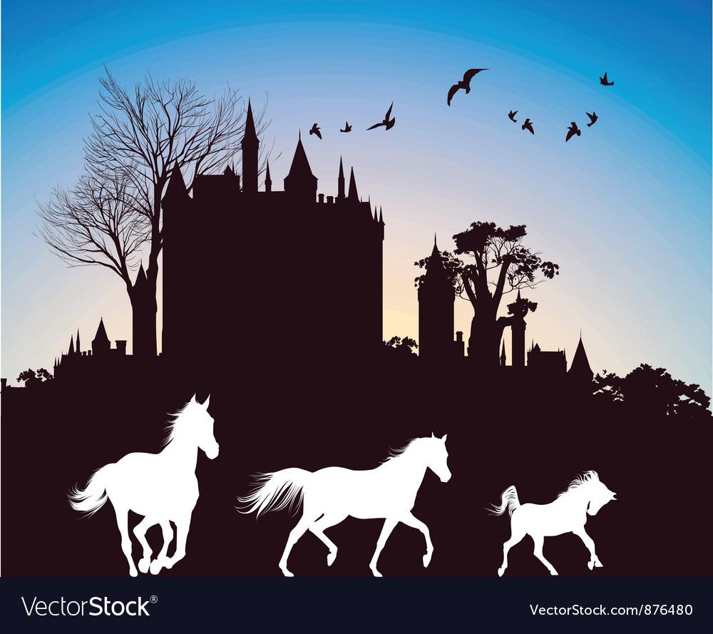 Castle at dusk vector image