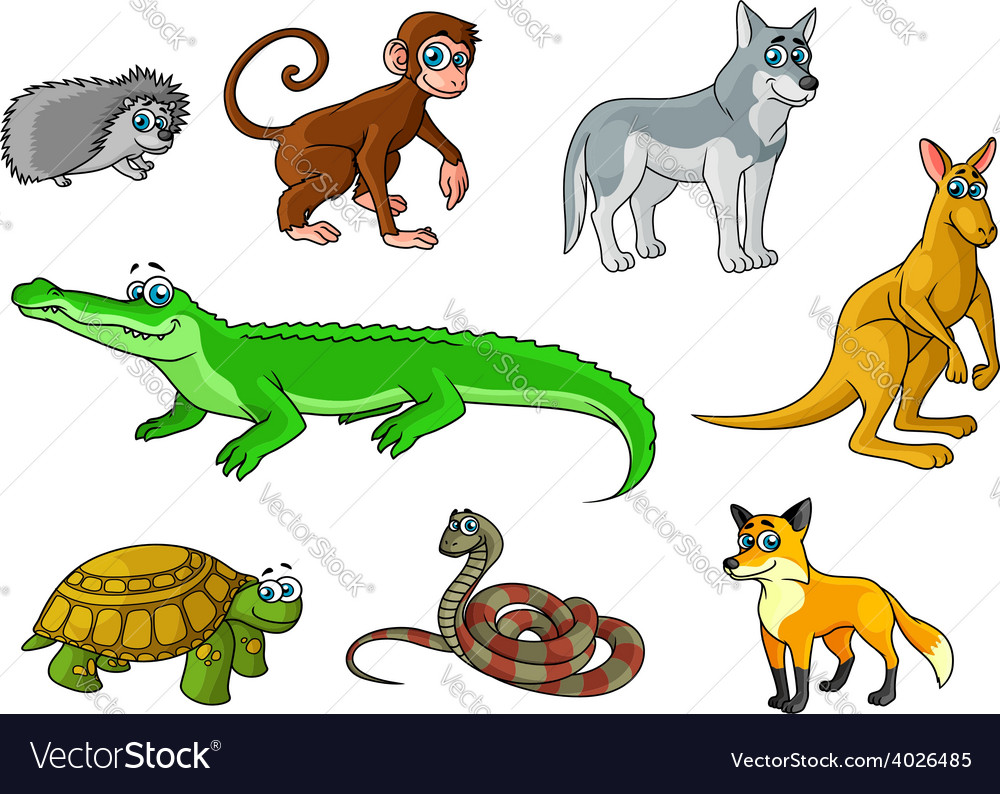 Cartoon forest and jungle wild animals