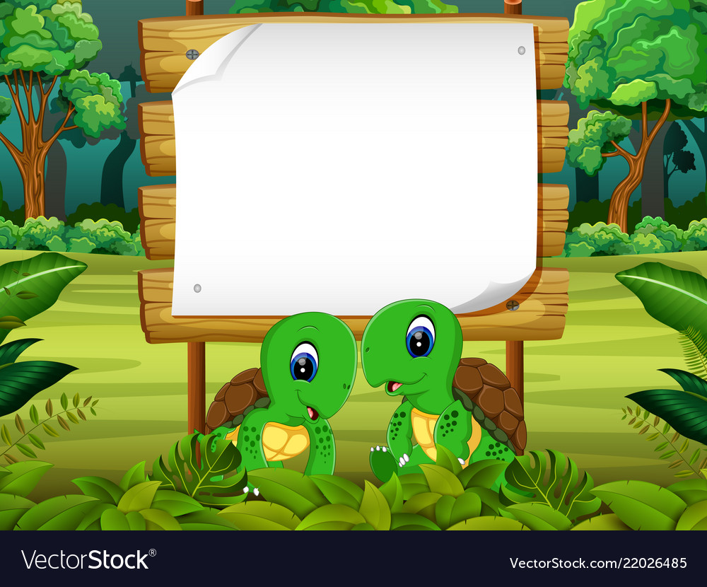 Wooden board blank space with two turtle