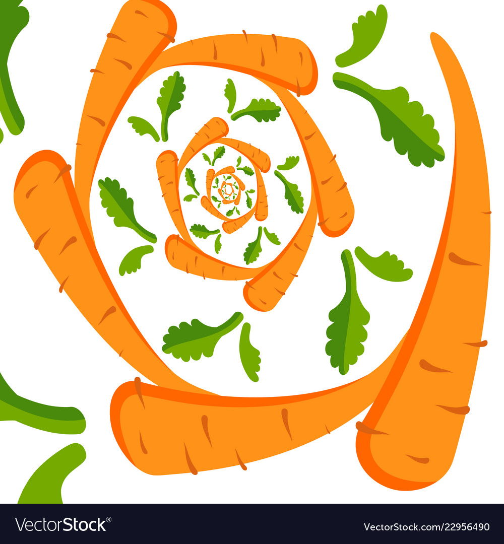 Background with orange carrots on a white