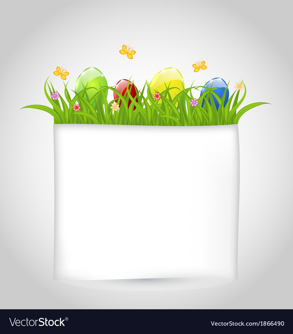 Easter colorful eggs in green grass with empty