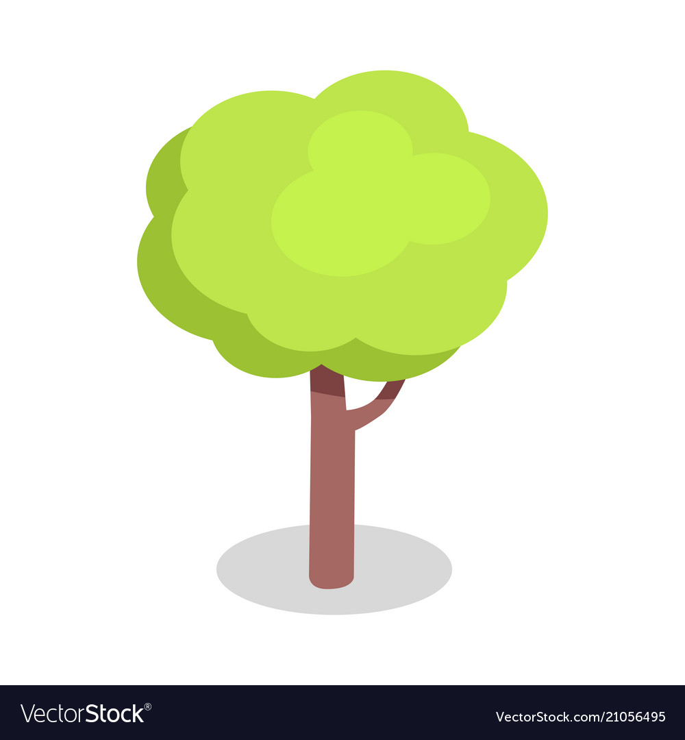 Green tree with bushy crown and brown trunk