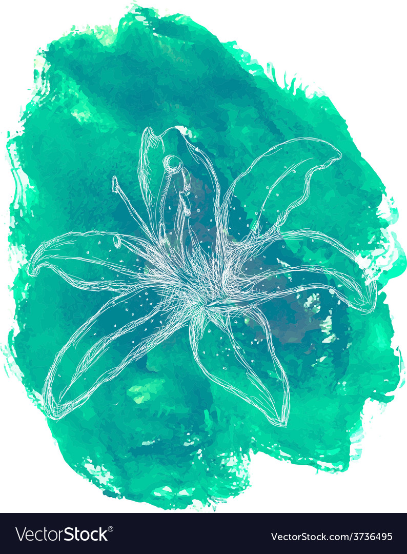 Hand drawn flower on watercolor background