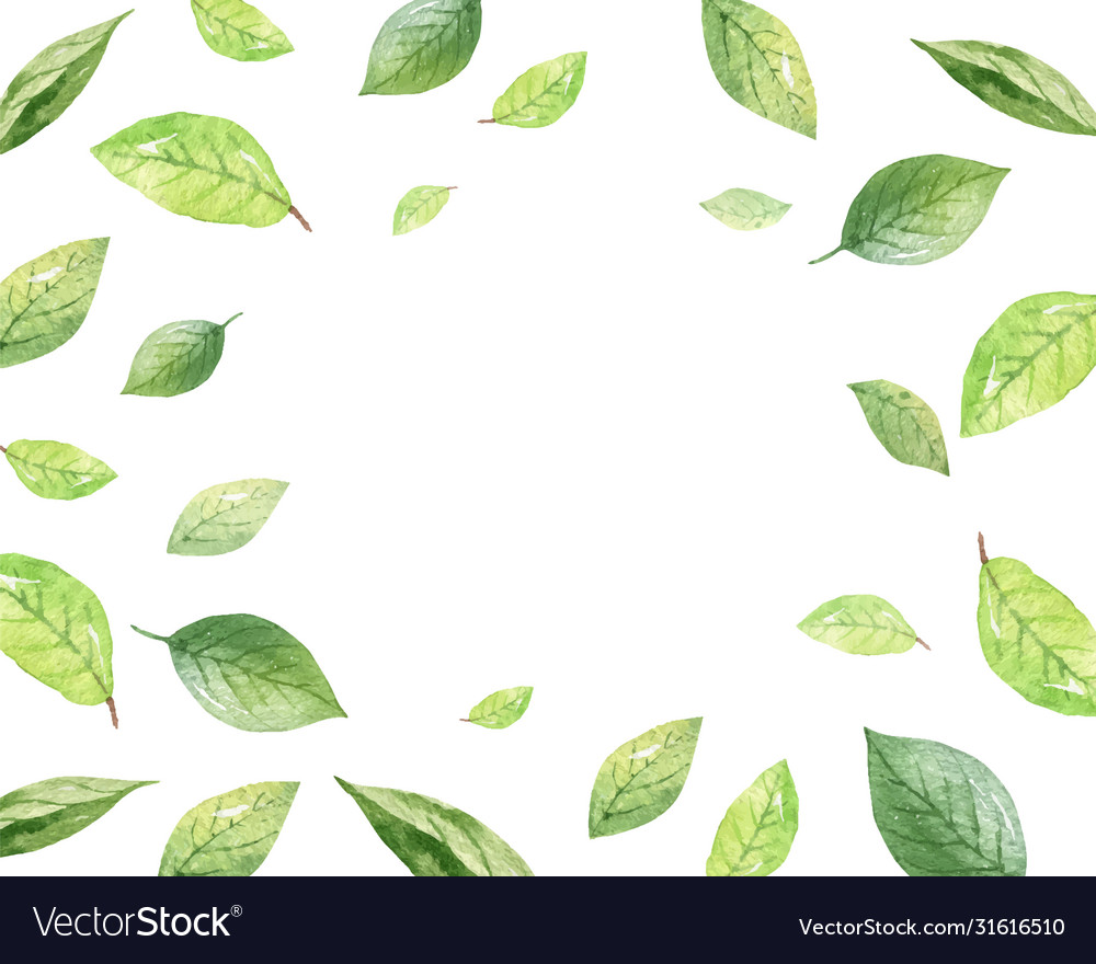 Watercolor design green leaves isolated
