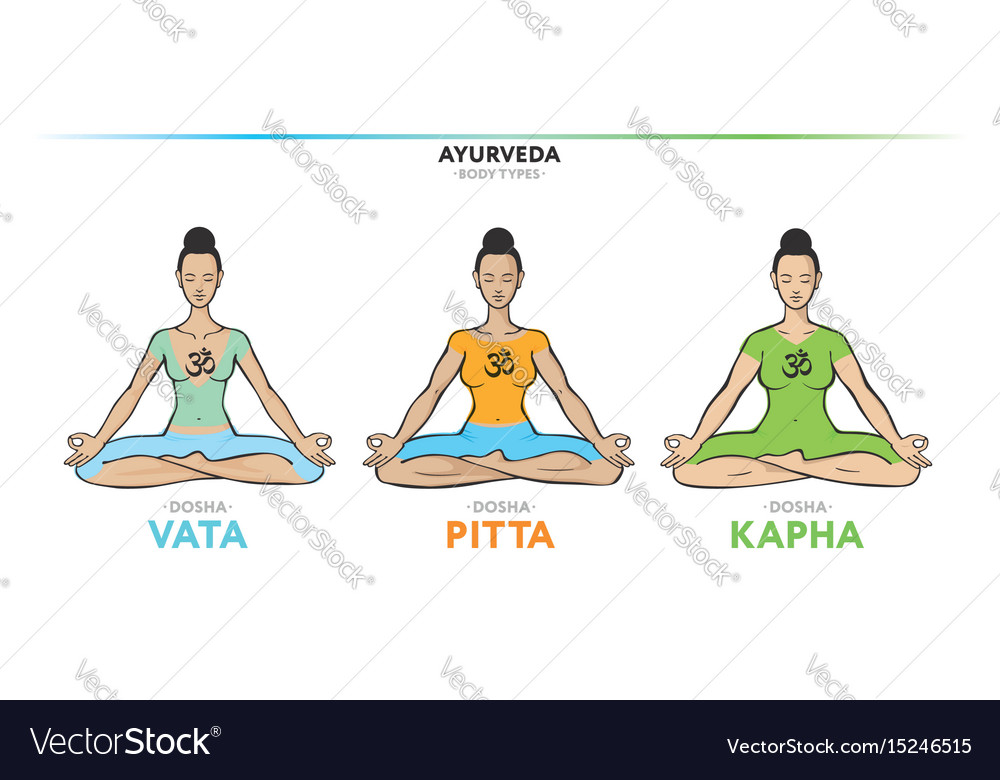 Vata Pitta And Kapha Doshas Vector Image
