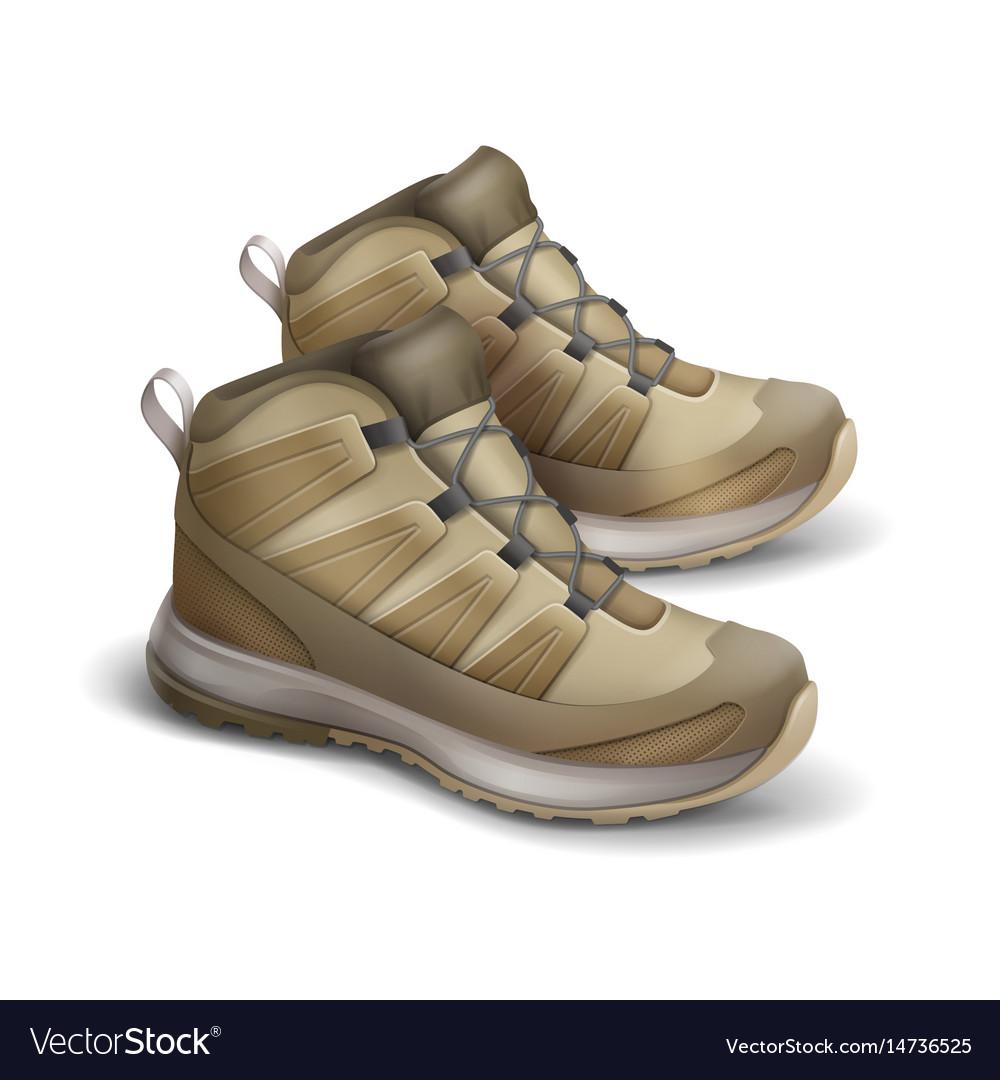 Pair of travel sneakers vector image