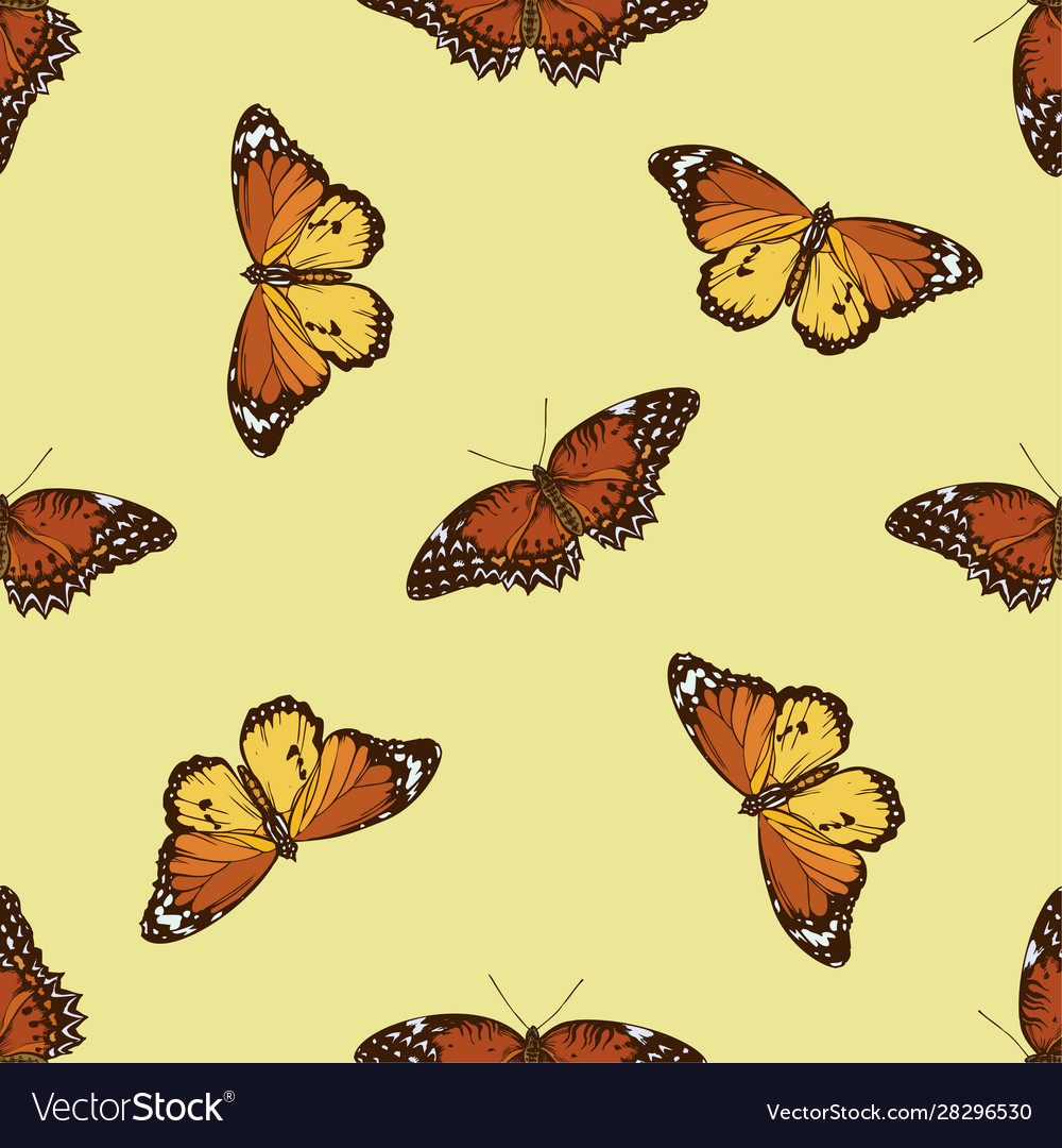 Seamless pattern with hand drawn colored cethosia