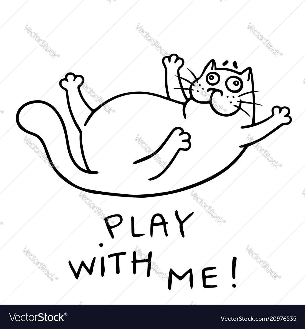 Funny cat wants to play isolated