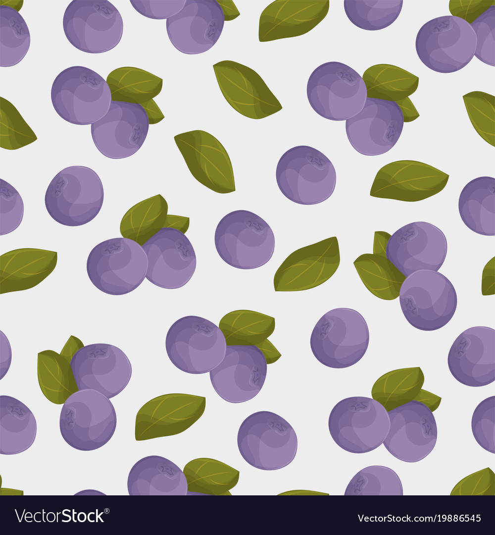 Blueberry seamless pattern colorful blue