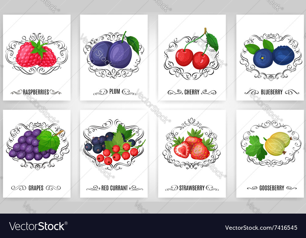 Fresh berries and calligraphic elements