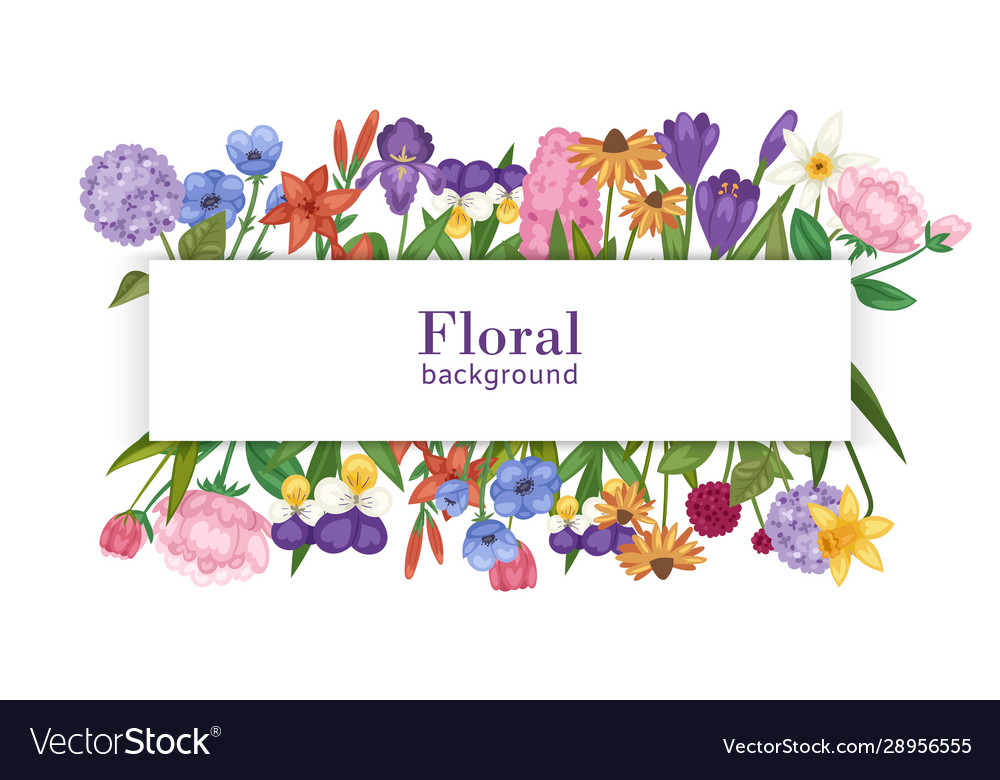 Floral background with summer flower bouquet