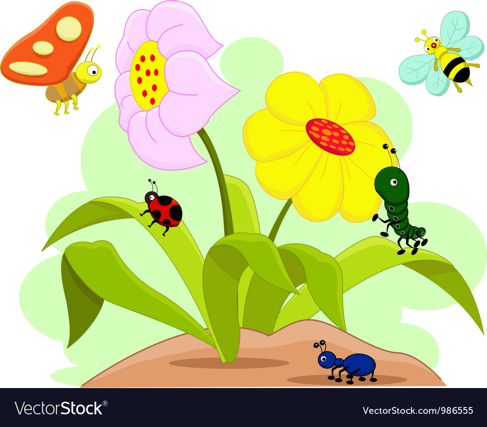 Insects and flower