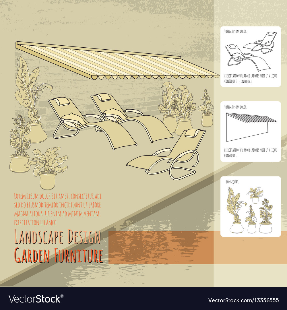 Lounge chairs patio awning and flowers in po vector image