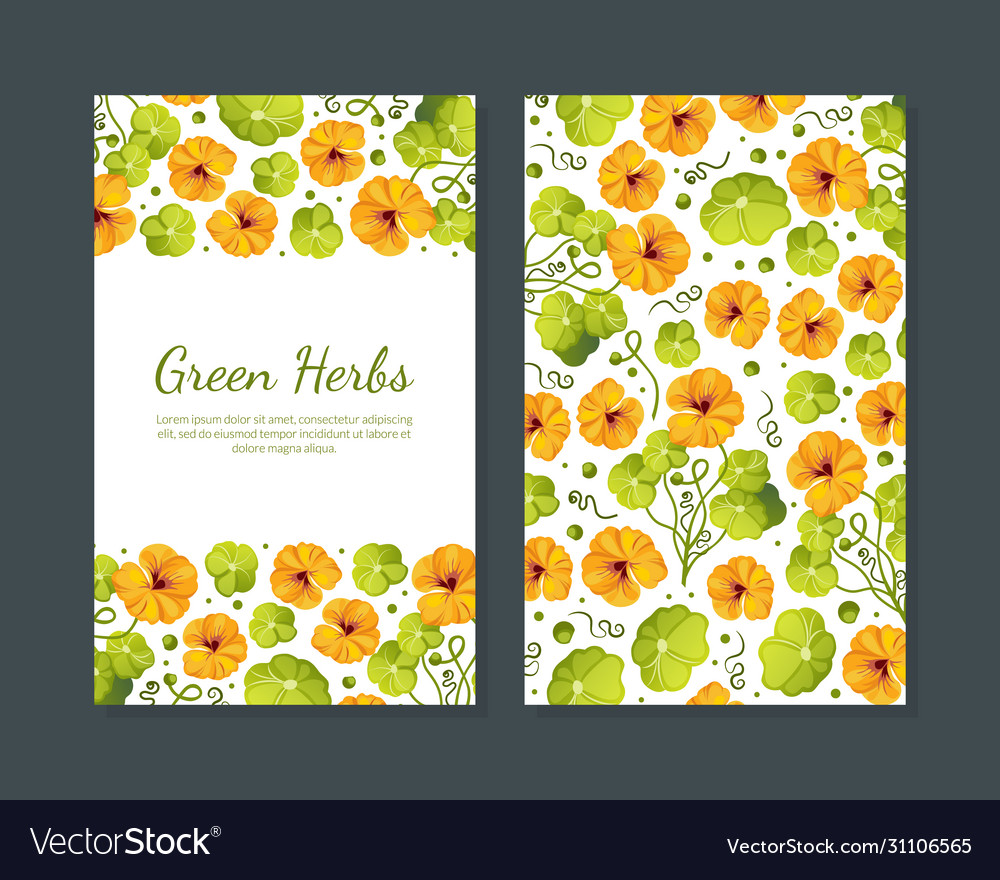 Green herbs card template with beautiful flowers