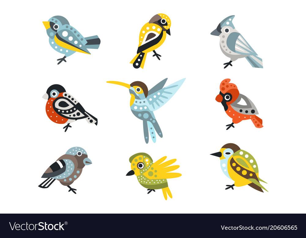 Small bird species sparrows and hummingbirds set