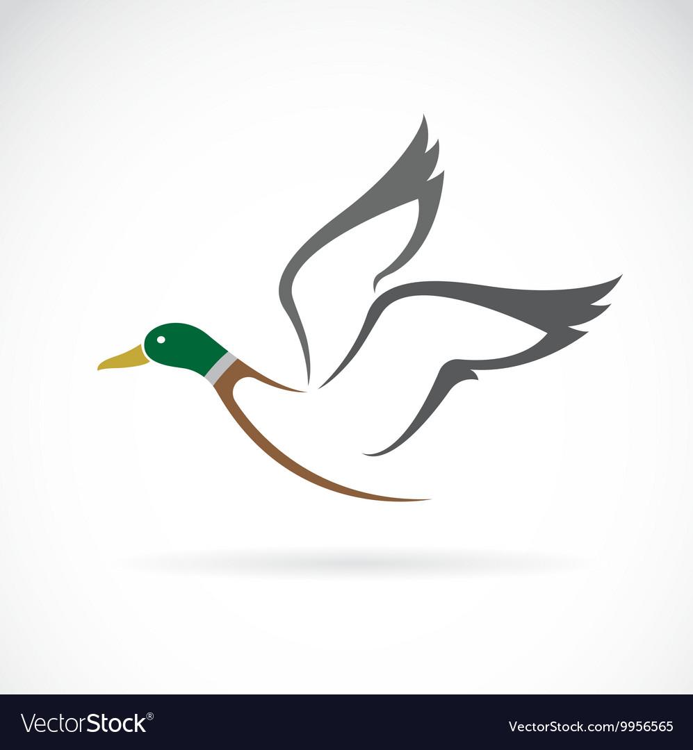 Wild duck design