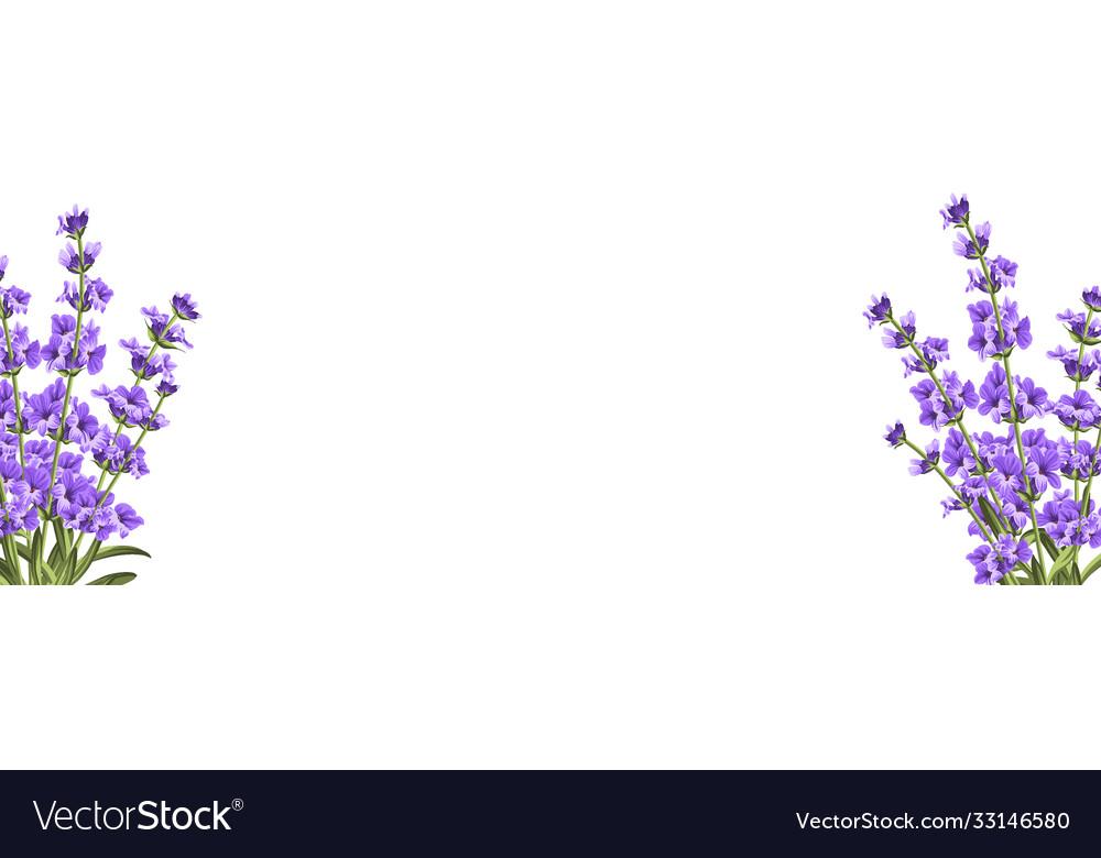 Botanical elements design template panoramic