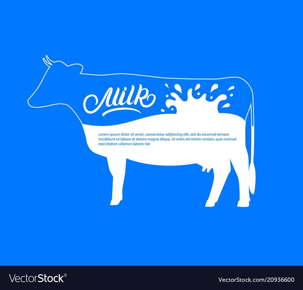 Cow silhouette with splash drops milk