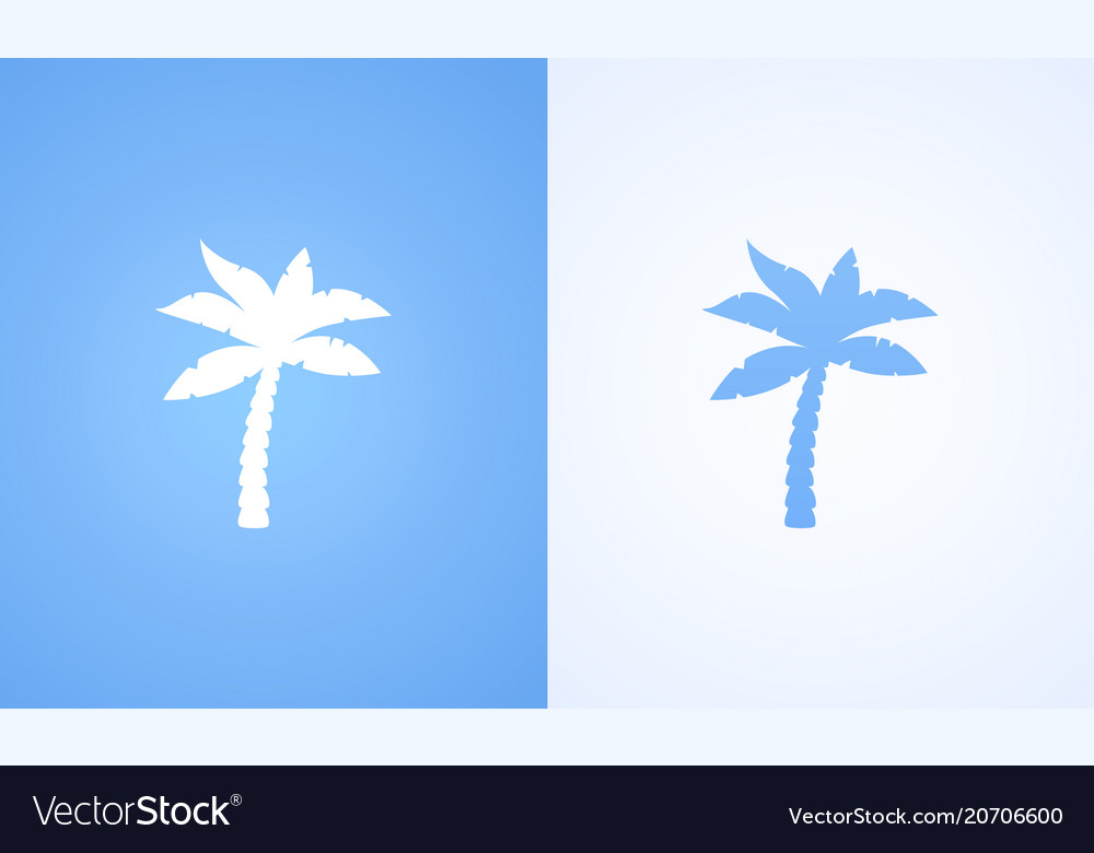 Silhouette of coconut palm
