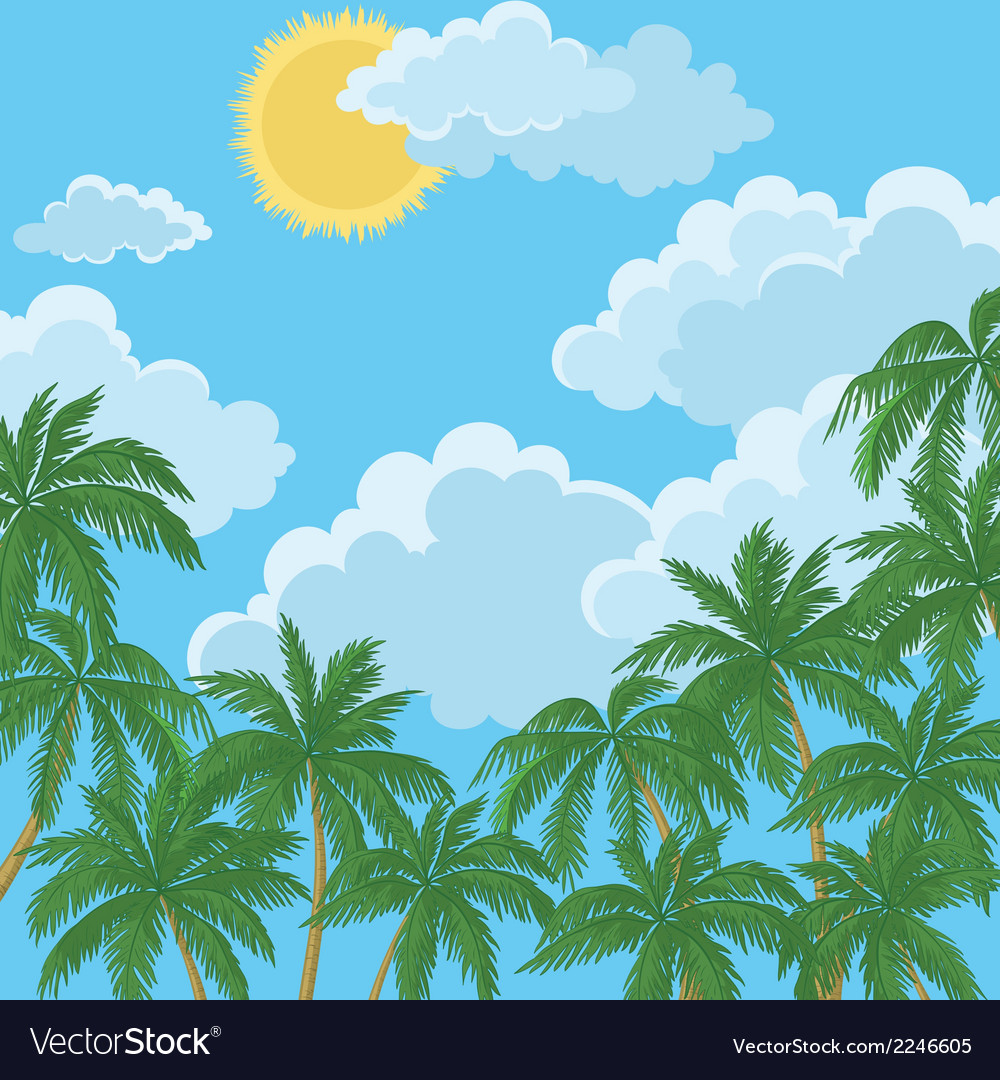 Tropical palms sky with sun and clouds vector image