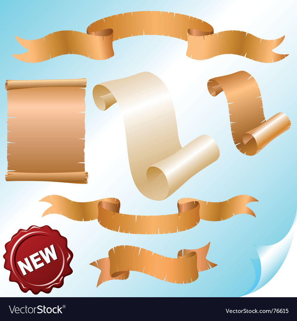 Vintage scrolls and ribbons vector image