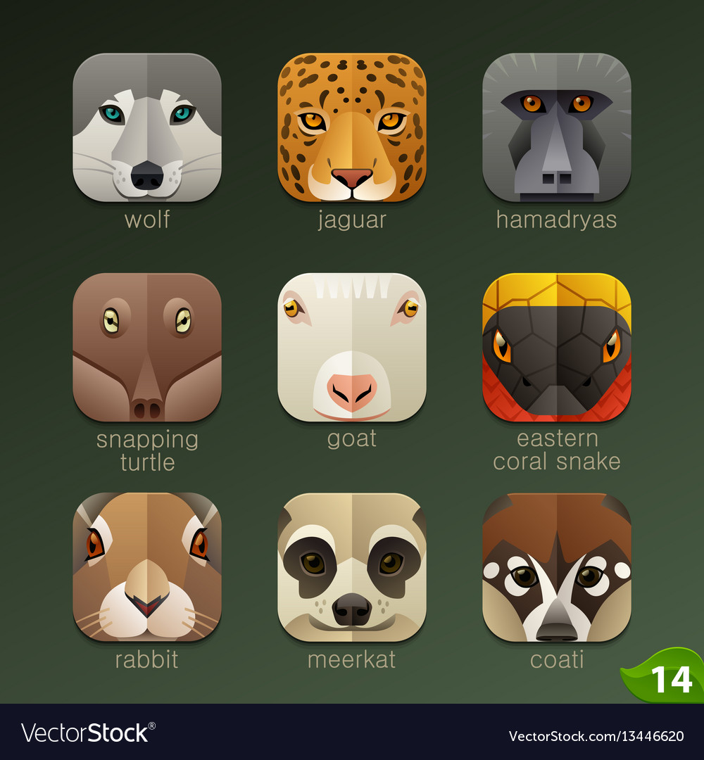 Animal faces for app icons-set 14