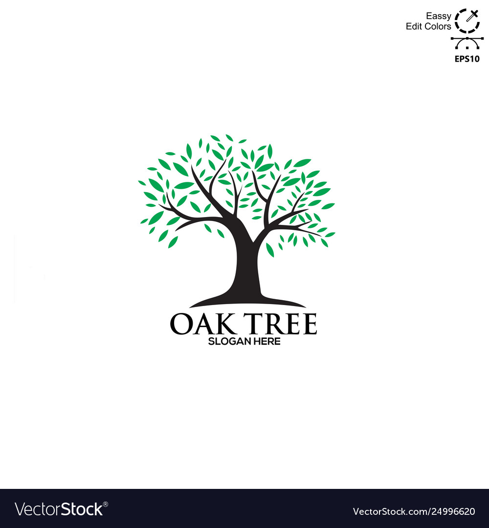 Simple and modern oaks tree logo vector