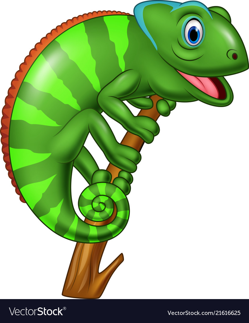 Cartoon Chameleon On A Branch Royalty Free Vector Image