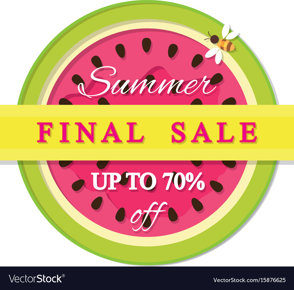 Summer final sale label watermelon colorful icon vector image