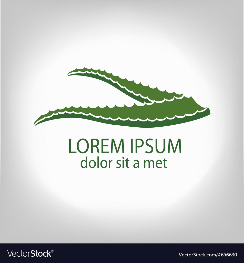 Aloe-vera Leaf logo concept sign company vector image