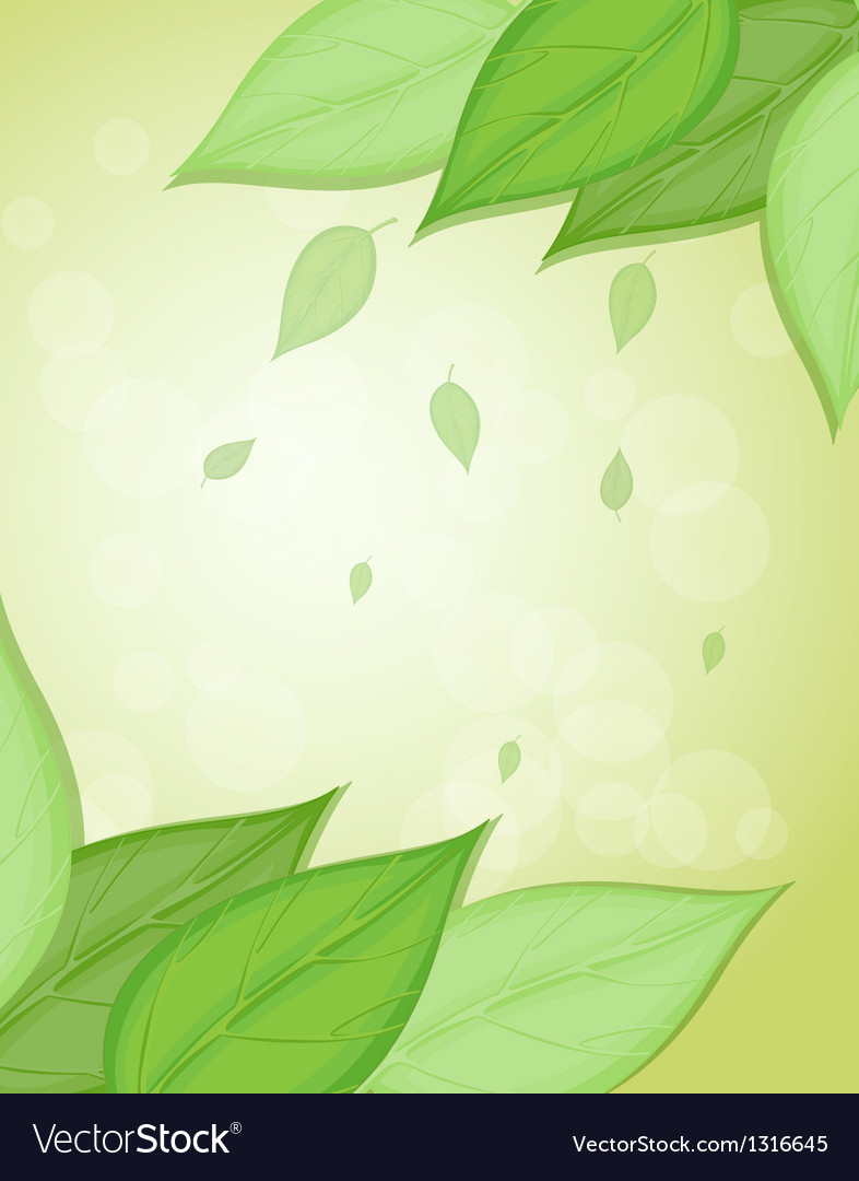 a stationery with big green leaves royalty free vector image
