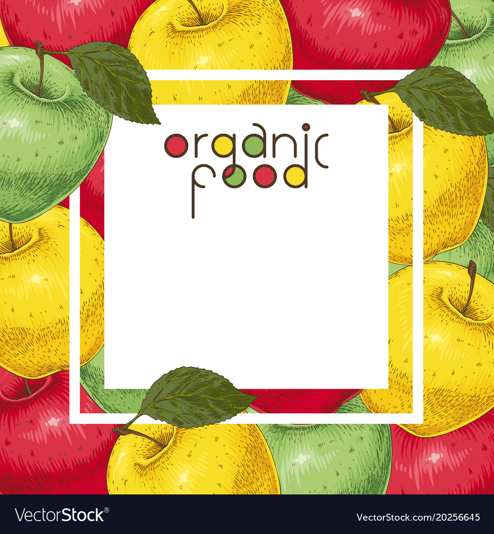 template card with colorful apples royalty free vector image