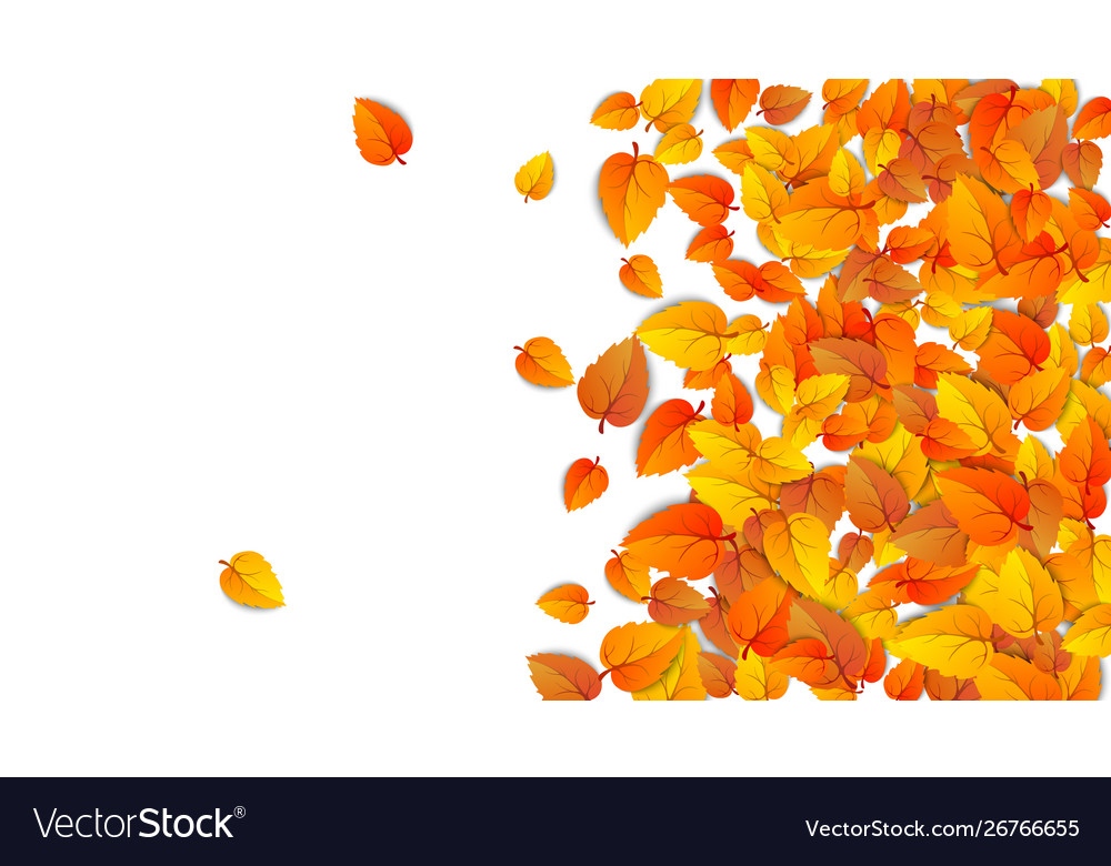 Autumn advertising banner with half leaves