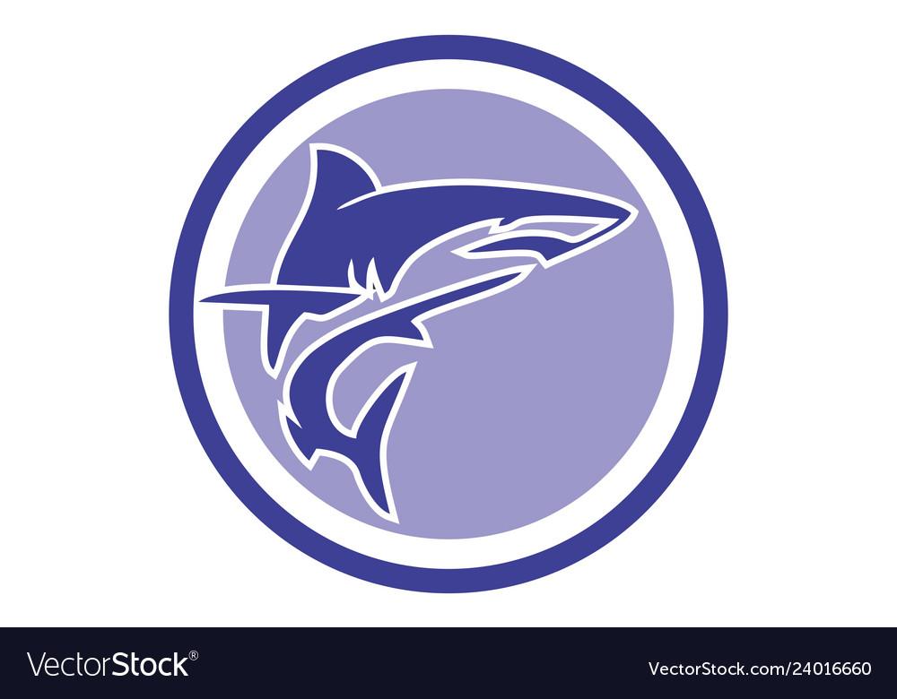 Abstract shark logo icon design