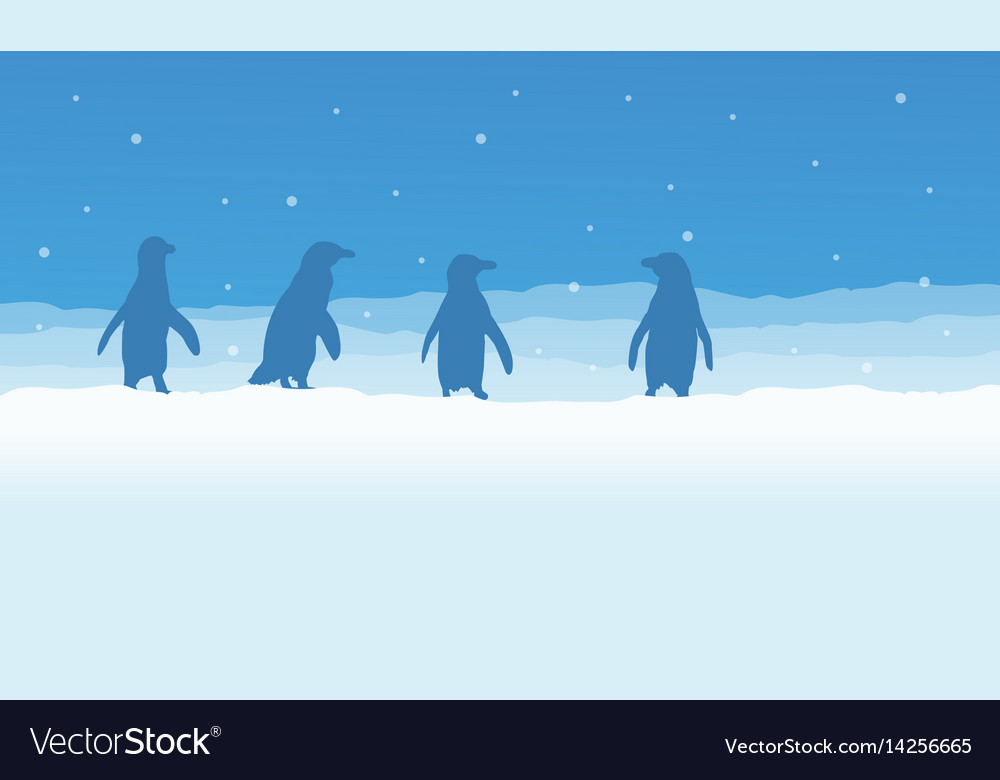 Landscape of penguin on snow silhouette