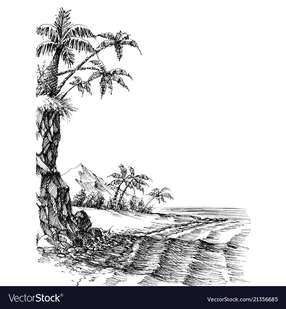 Beach and sea view palm trees on shore