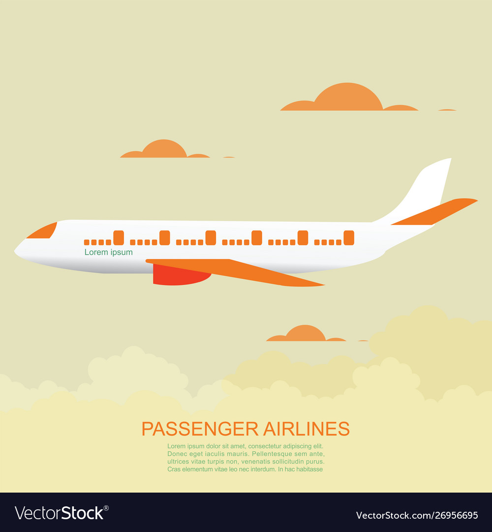 Passenger airlines with airplane