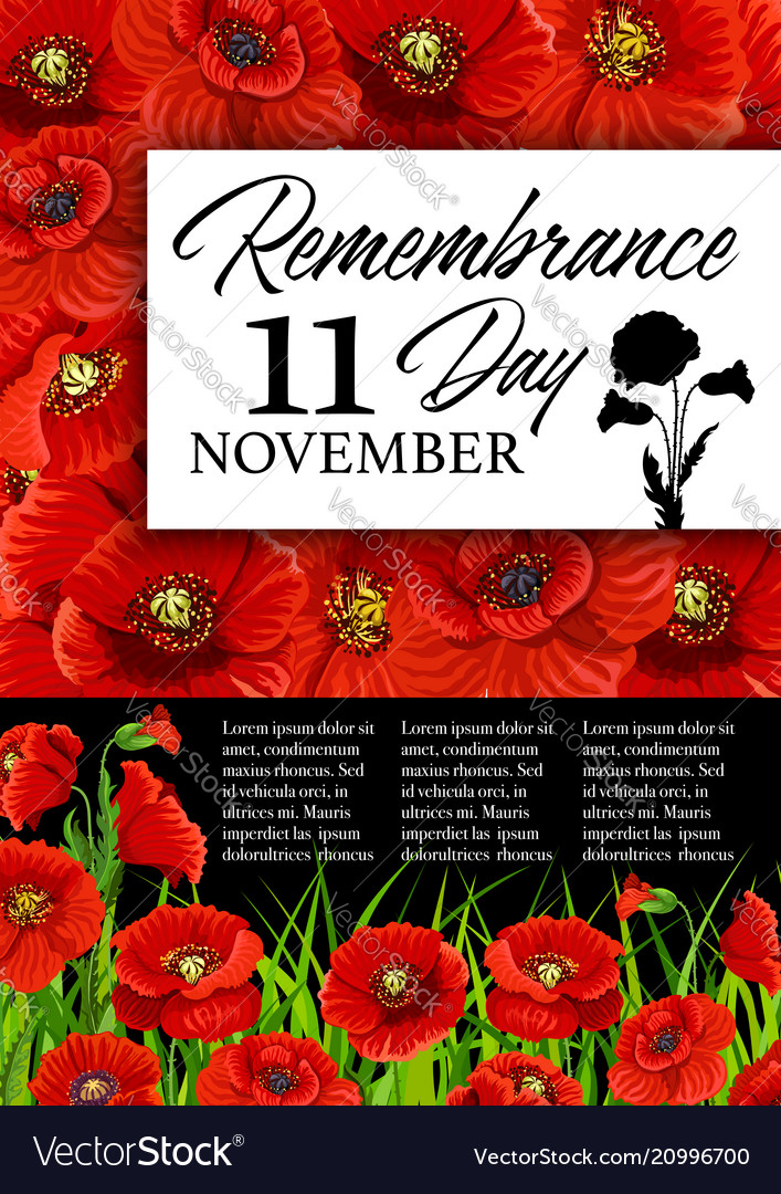 Remembrance Day Poppy Flower Memorial Card Vector Image