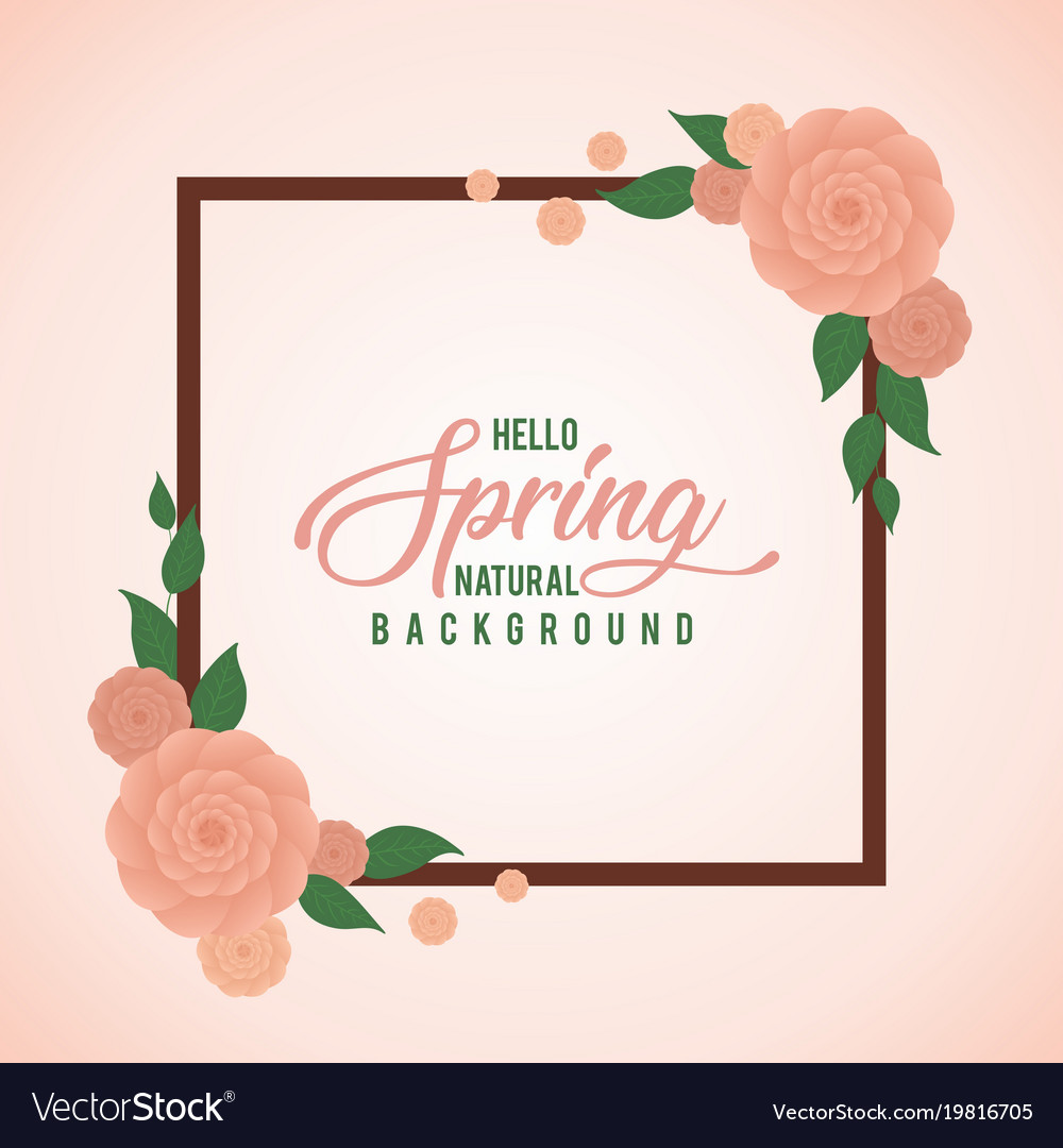 peach rose water color frame spring background vector image vectorstock