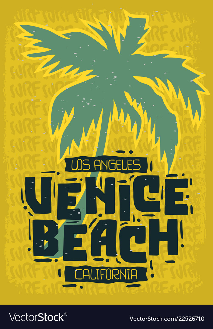 Venice beach los angeles california palm tree