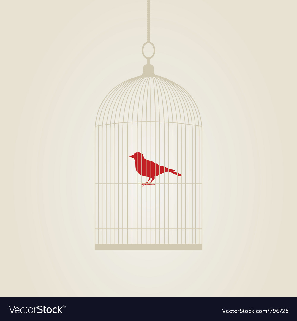 Bird in a cage vector image