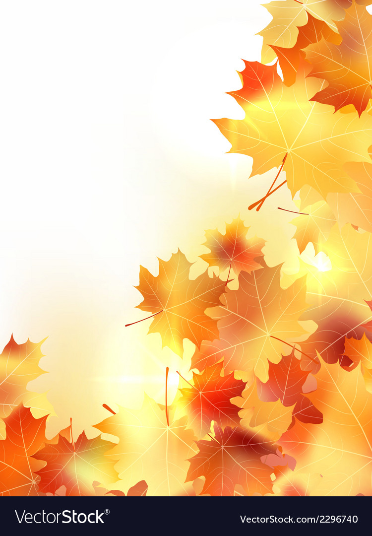 Background with maple autumn leaves plus EPS10