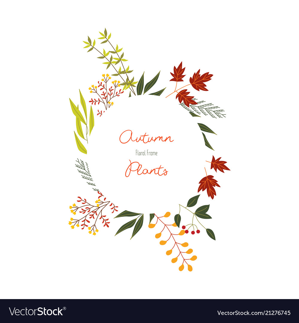 Autumn colorful plants and leaves in decorative