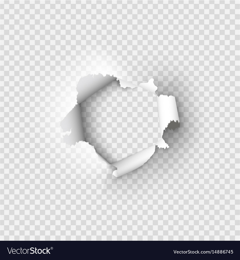 holes torn in paper on transparent royalty free vector image