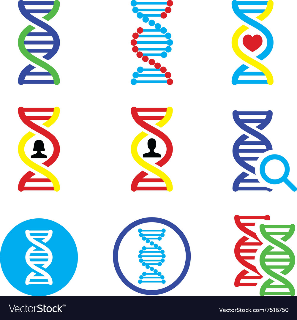 DNA genetics icons set