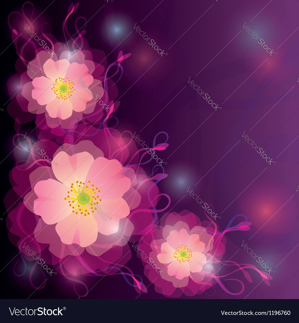 Greeting or invitation card with flowers and curls vector image