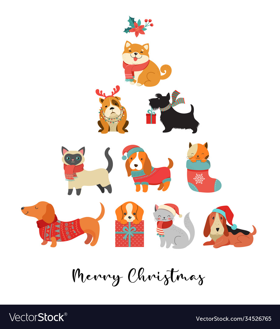 Collection christmas cats and dogs merry