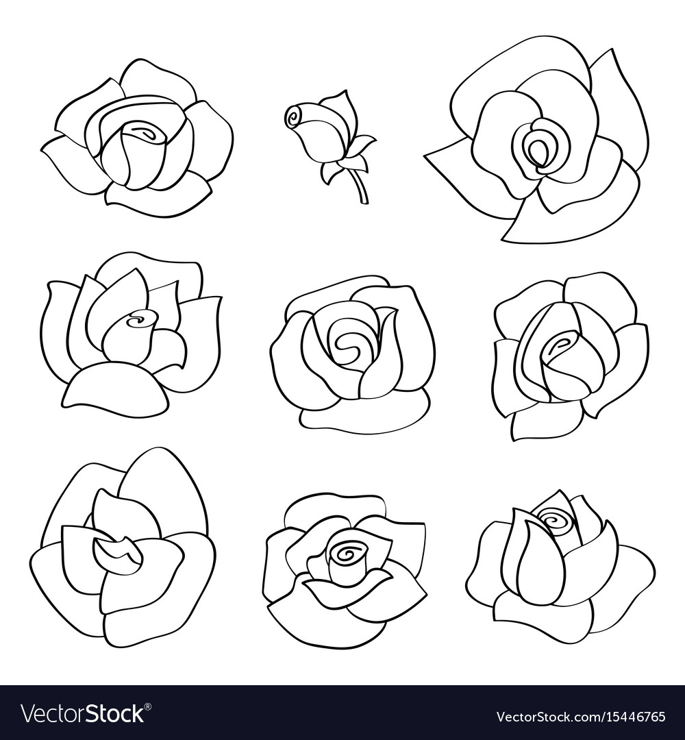 Set with line roses hand-drawn flowers