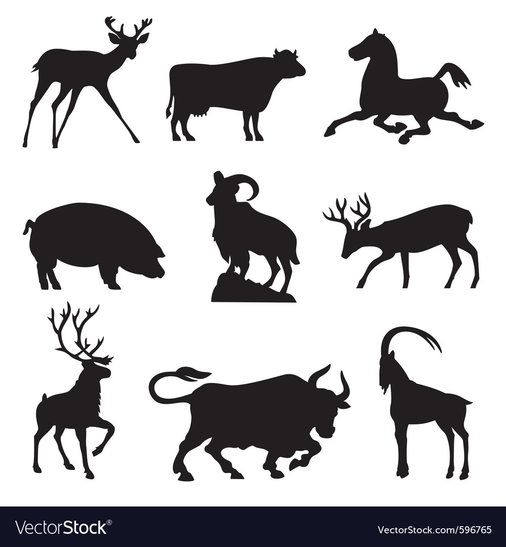 Ungulates animals vector image